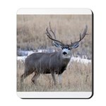 Muley Buck Mousepad
