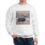 Muley Buck Sweatshirt