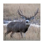 Muley Buck Tile Coaster