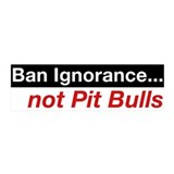 20x6 Wall Peel - Ban Ignorance... not Pit Bulls