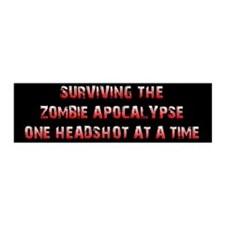 Surviving The Zombie Apocalypse (20x6 Wall Peel)