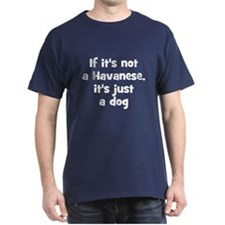 If it's not a Havanese, it's  Black T-Shirt
