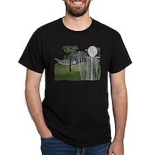Lapeer Disc Golf T-Shirt