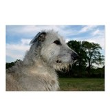 Peaceful Irish Wolfhound Postcards (Package of 8)