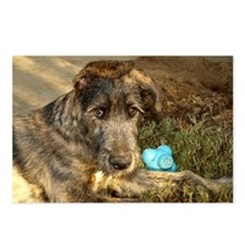 Handsome Wolfhound puppy Postcards (Package of 8)