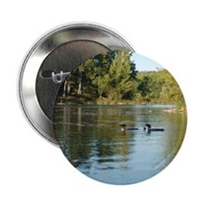 "Loon 2.25"" Button (10 pack)"