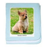 Swedish Vallhund Puppy 9Y165D-173 baby blanket