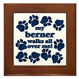 Berner WALKS Framed Tile
