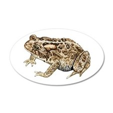 Toad 35x21 Oval Wall Peel