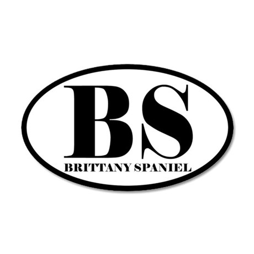 BS Abbreviation Brittany Spaniel Sticker