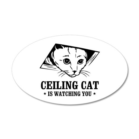 ceiling cat is watching you 20x12 Oval Wall Peel