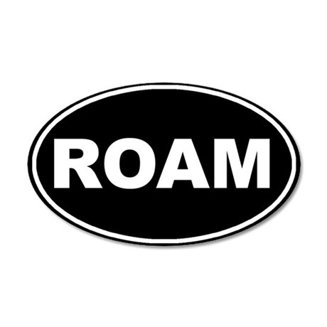 Roam Black Oval 35x21 Oval Wall Peel