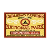 Carlsbad Caverns National Par20x12 Wall Peel