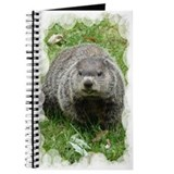 Groundhog eating Journal