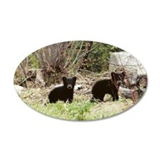 Black Bear Inc 35x21 Oval Wall Peel