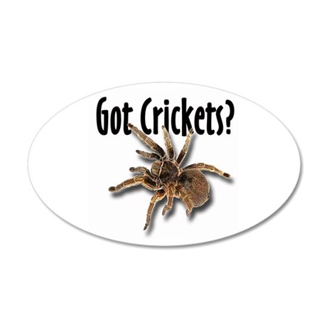 Tarantula Got Crickets 35x21 Oval Wall Peel
