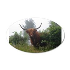 Highland Cow 20x12 Oval Wall Peel