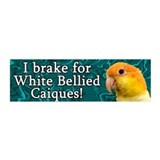 I Brake for White Bellied Caiques 20x6 Wall Peel