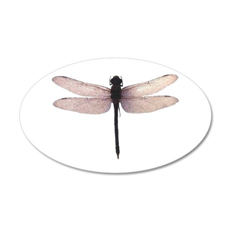 Dragonfly 35x21 Oval Wall Peel