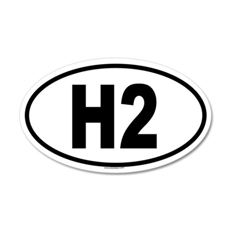 H2 35x21 Oval Wall Peel