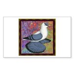 Swallow Pigeon Framed Sticker (Rectangle)