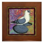 Swallow Pigeon Framed Framed Tile