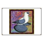 Swallow Pigeon Framed Banner