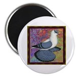 "Swallow Pigeon Framed 2.25"" Magnet (10 pack)"