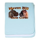 Cute Haven baby blanket