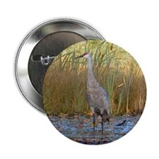 Sandhill Crane Button