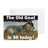 Old Goat is 40 Today Greeting Cards (Pk of 20)