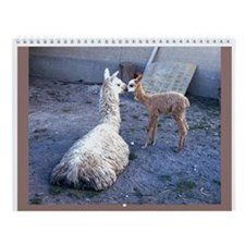 llamas and alpacas Wall Calendar