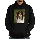 Shetland Sheepdog by Dawn Sec Hoody