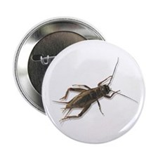 "Cricket 2.25"" Button (10 pack)"