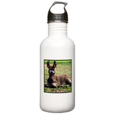 Sleepy Donkey Baby Water Bottle