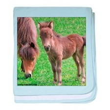 Mini Pinto Filly & Mother baby blanket