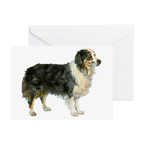 Austrailian Shepherd Cool Stu Greeting Card