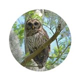 Barred Owl Ornament (Round)