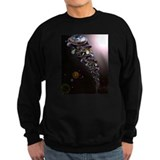 Turtles All The Way Down Sweatshirt