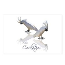 cockatoos Postcards (Package of 8)