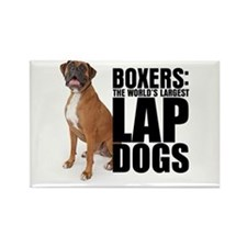 Boxer Lap Dog - Rectangle Magnet