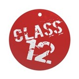 Class of 2012 Ornament (Round)