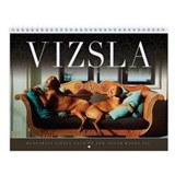 La Dolce Vizsla Wall Calendar