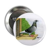 Racing Homer Pigeon 2.25&amp;quot; Button (10 pack)