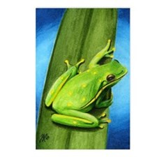 ACEO Frogs - Postcards (Package of 8)