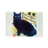 Stray Black Kitty Rectangle Magnet
