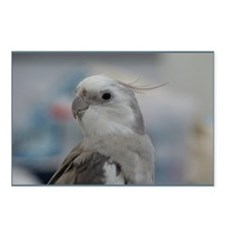 Cute Cockatiels Postcards (Package of 8)