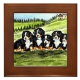 Bernese Moutain Dog Puppies Framed Tile
