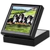 Bernese Moutain Dog Puppies Keepsake Box