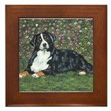 Bernese Mountain Dog Happy Gi Framed Tile